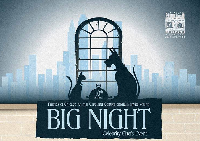 Big Night Celebrates 10 Years!